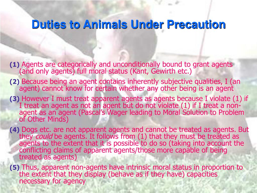 Duties to Animals Under Precaution