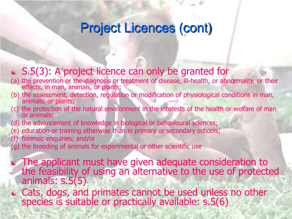 Project Licences (cont)