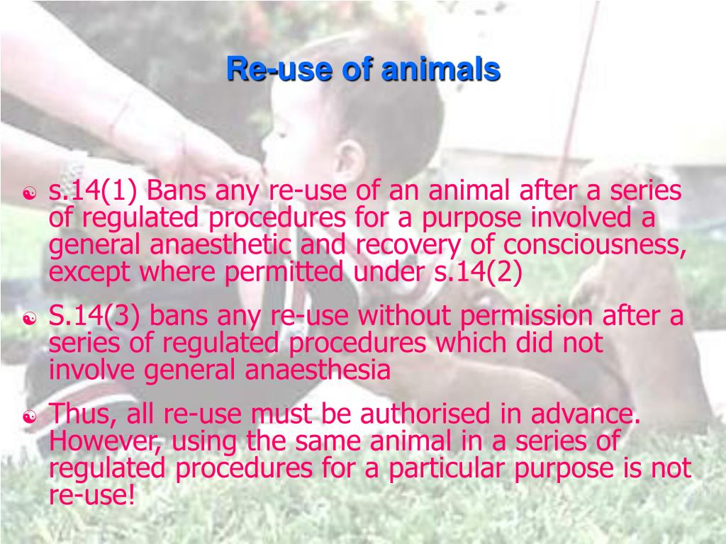 Re-use of animals