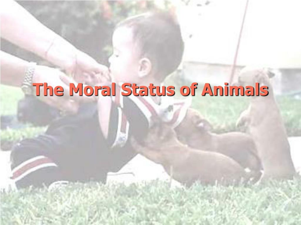 The Moral Status of Animals