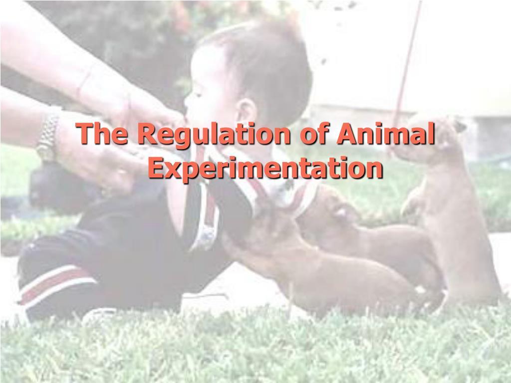 The Regulation of Animal Experimentation