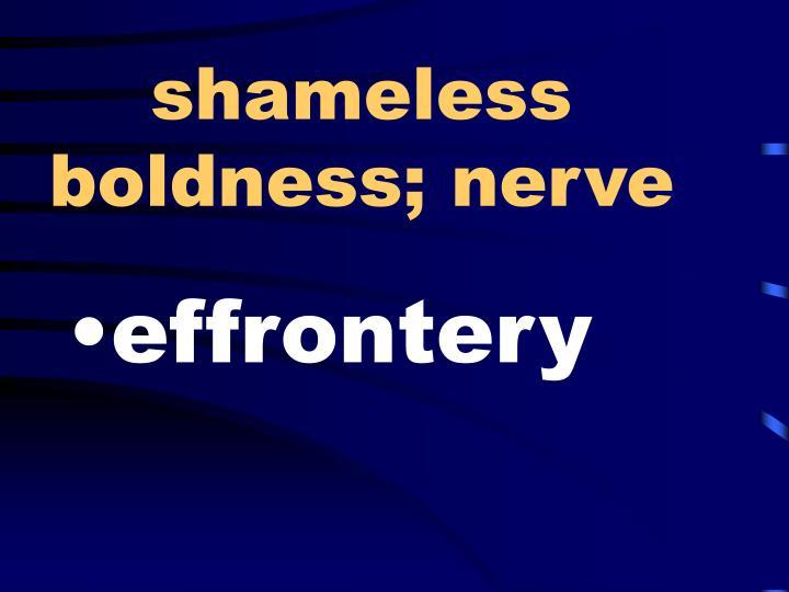 shameless boldness; nerve