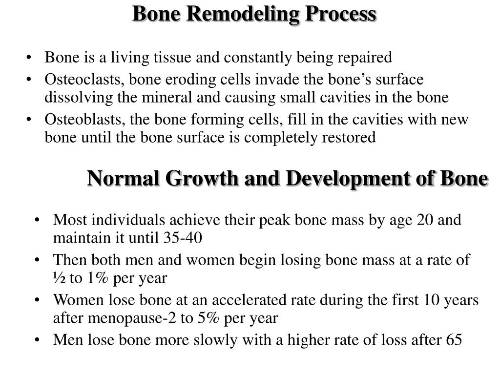 Bone Remodeling Process