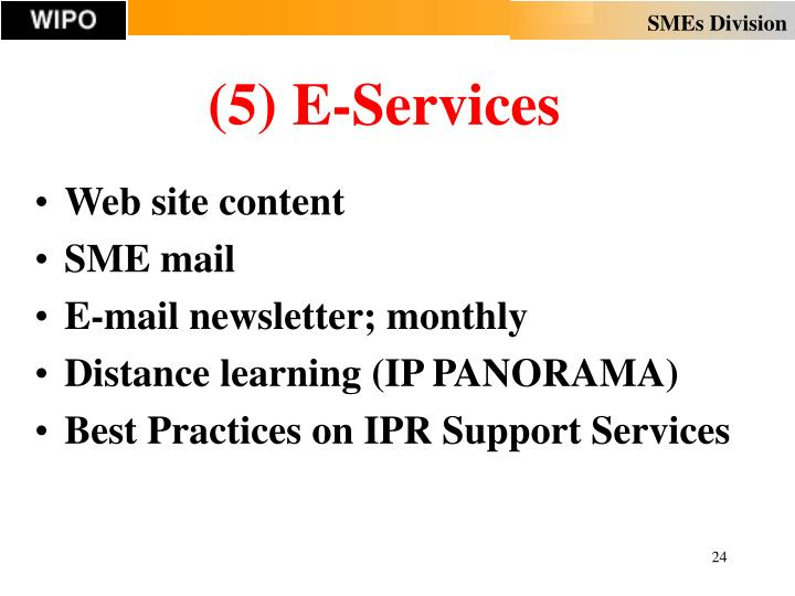 (5) E-Services