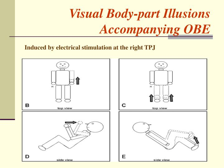 Visual Body-part Illusions Accompanying OBE