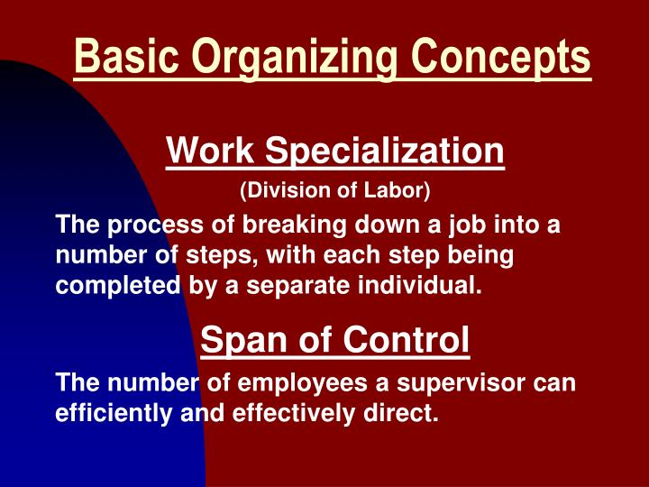 Basic organizing concepts