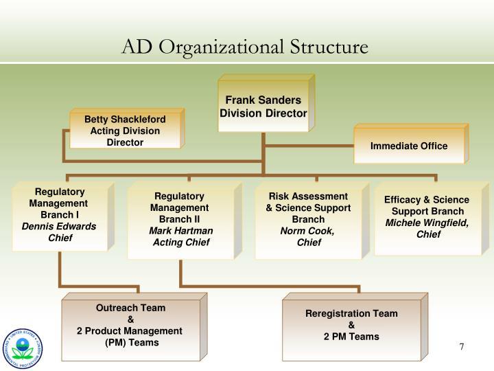 AD Organizational Structure