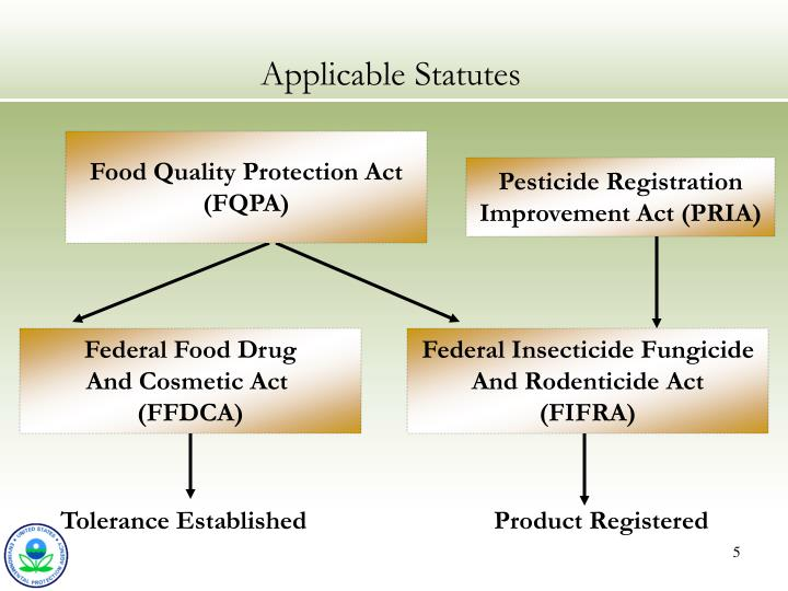 Applicable Statutes