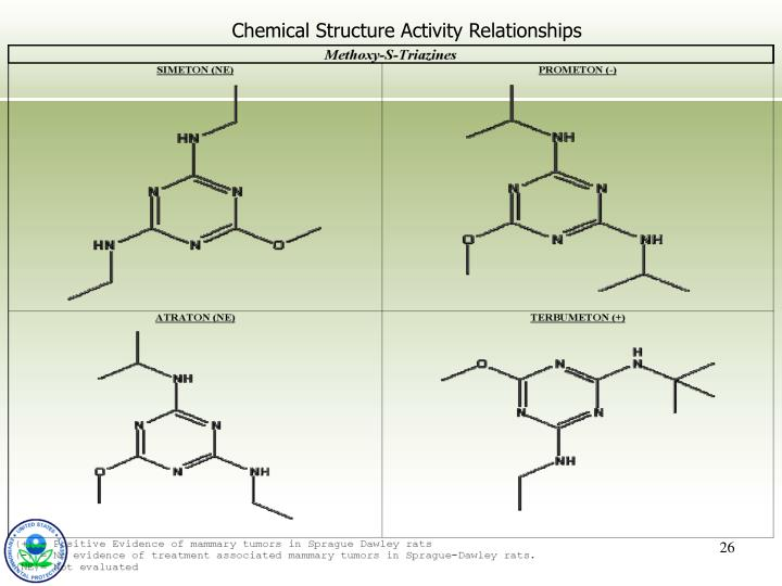 Chemical Structure Activity Relationships