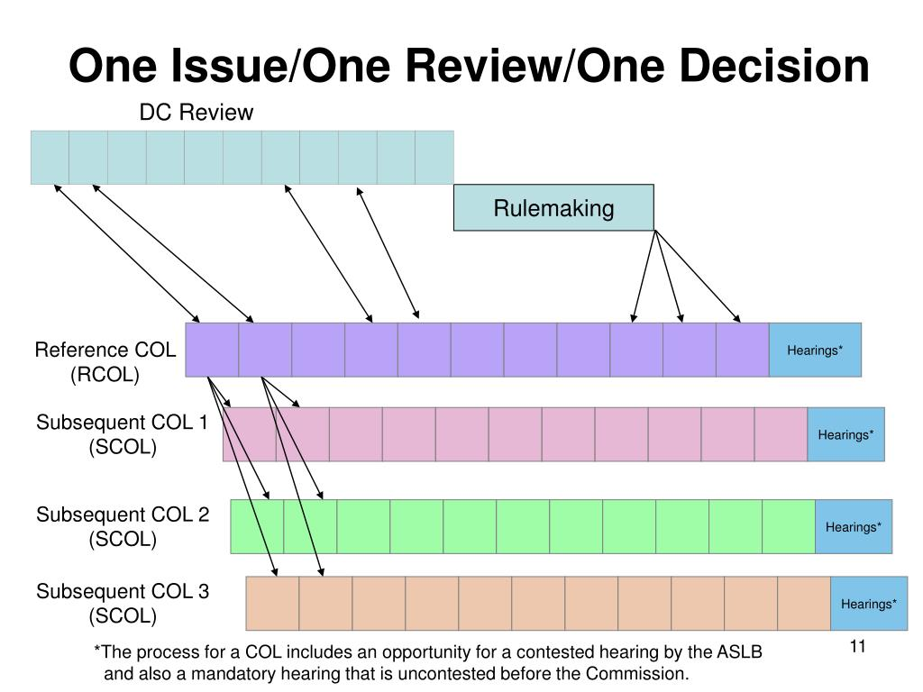 One Issue/One Review/One Decision
