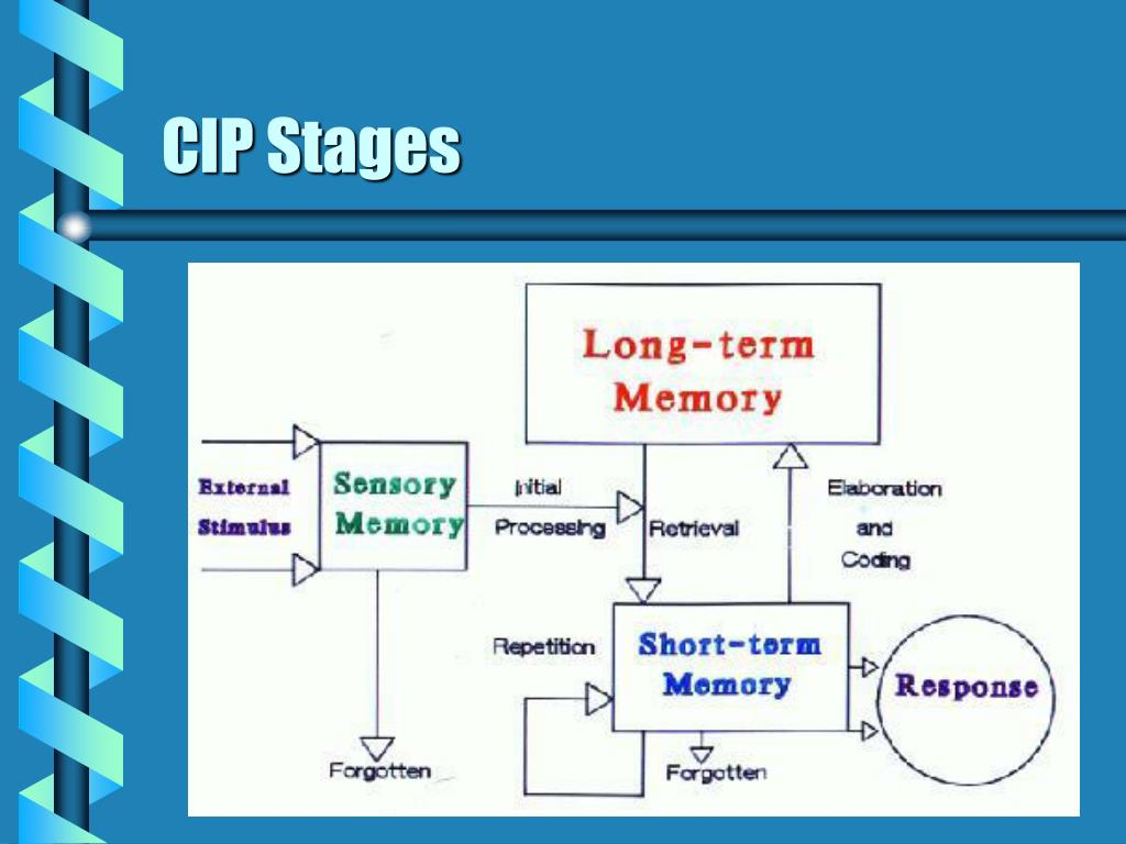 CIP Stages