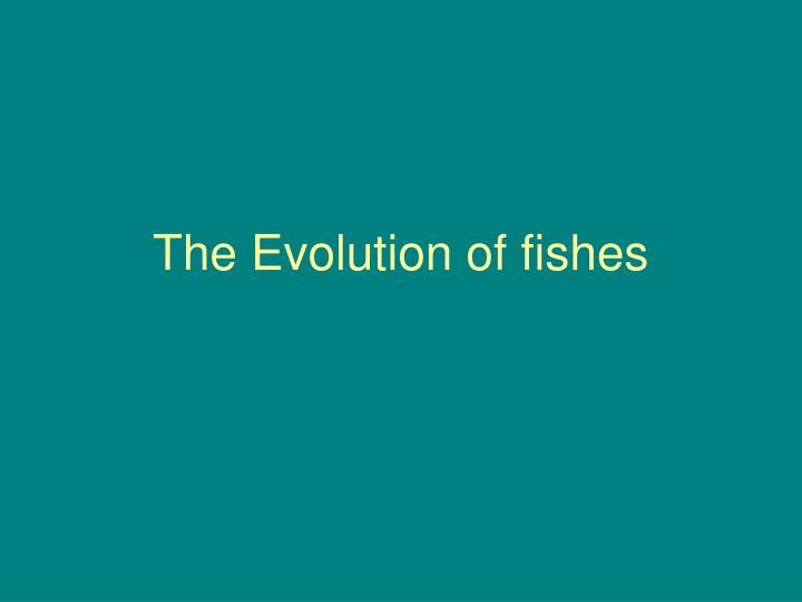 The evolution of fishes