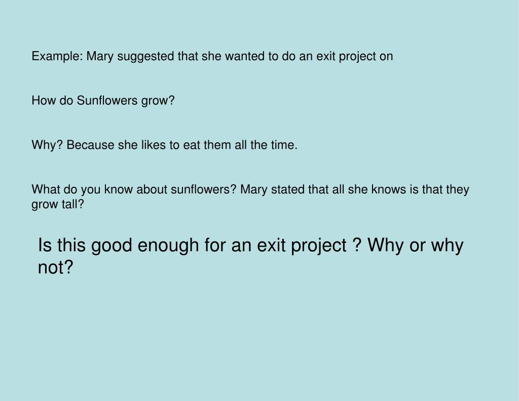 Example: Mary suggested that she wanted to do an exit project on