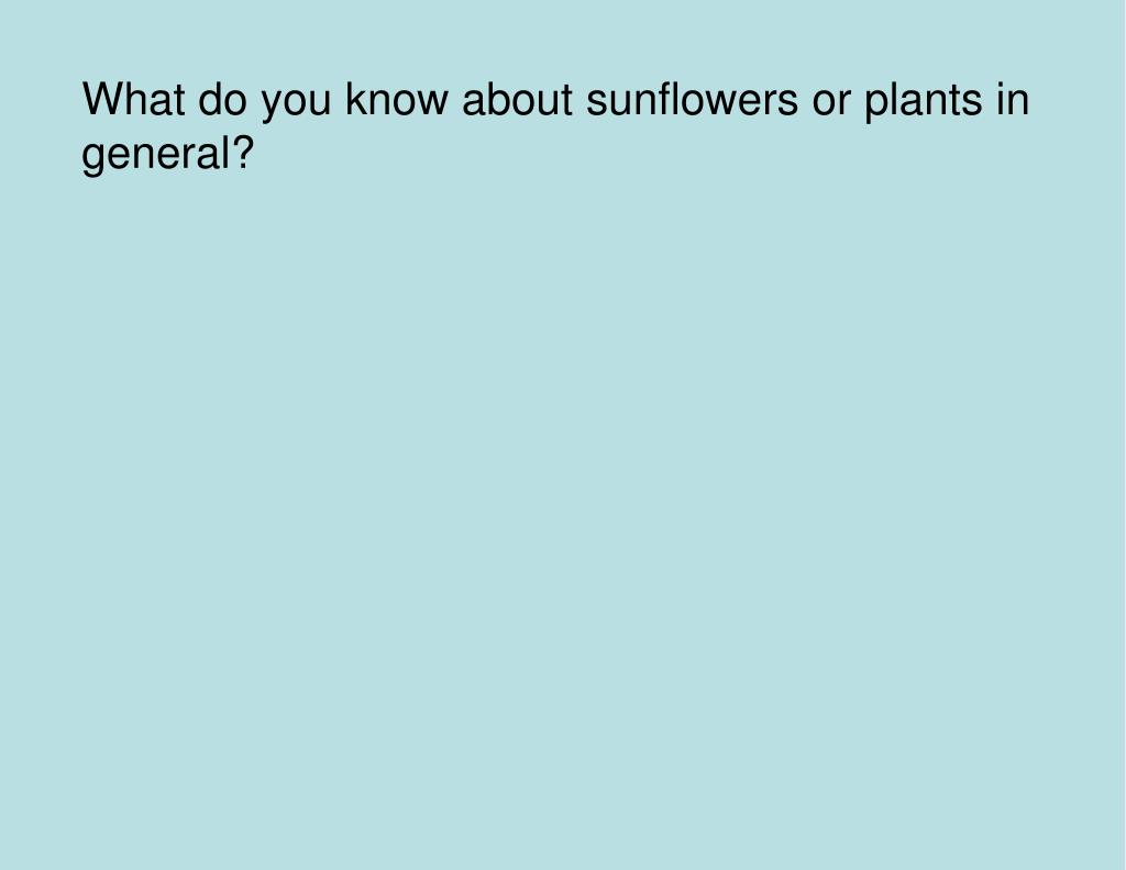 What do you know about sunflowers or plants in general?