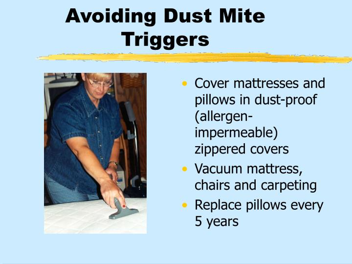 Avoiding Dust Mite Triggers