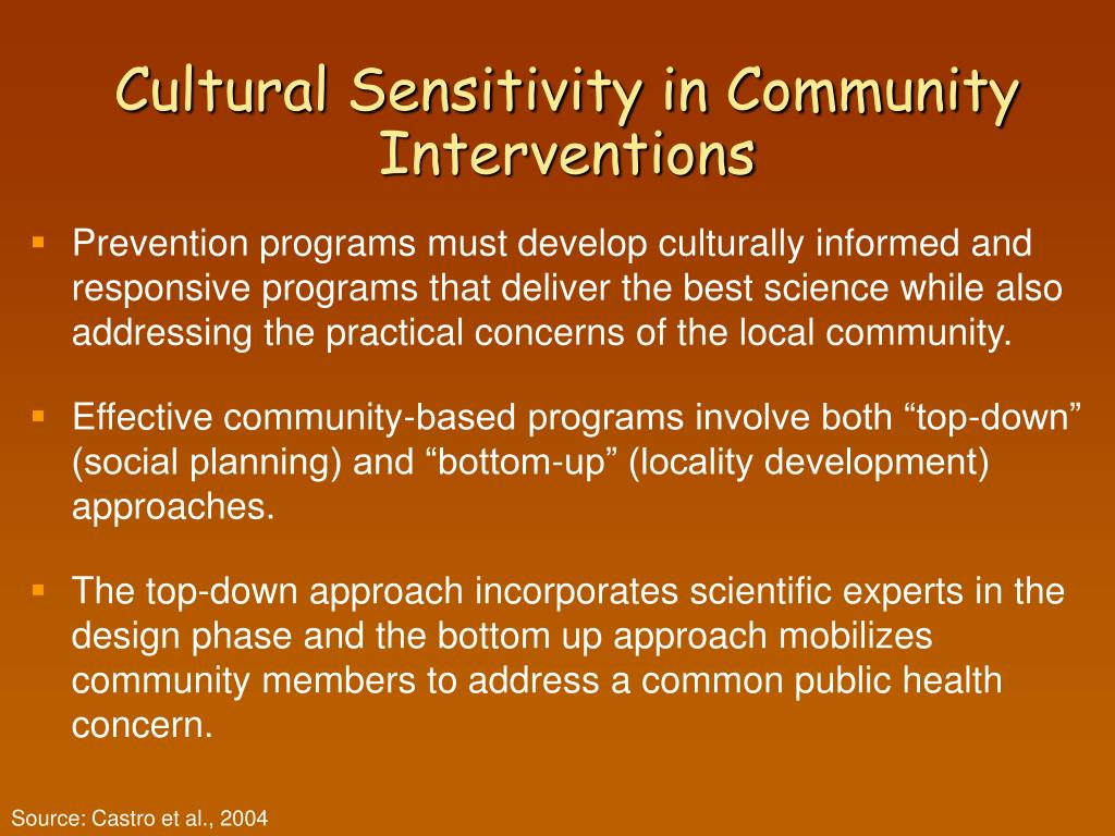 Cultural Sensitivity in Community Interventions