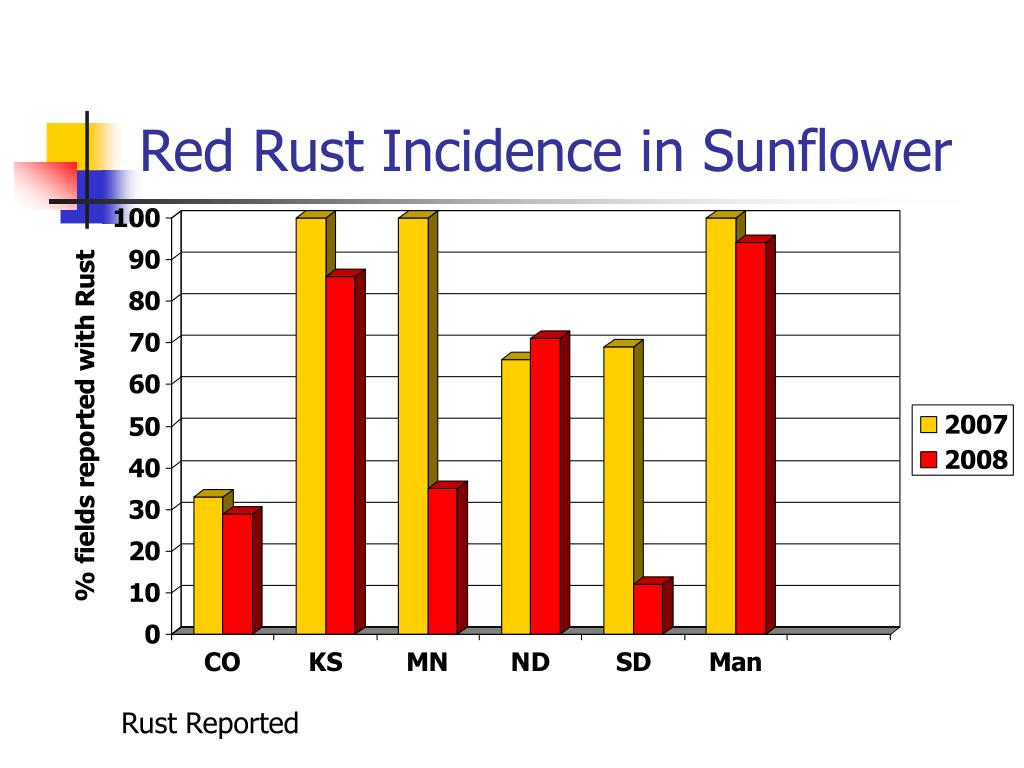 Red Rust Incidence in Sunflower