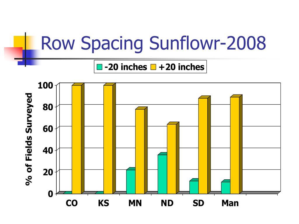 Row Spacing Sunflowr-2008