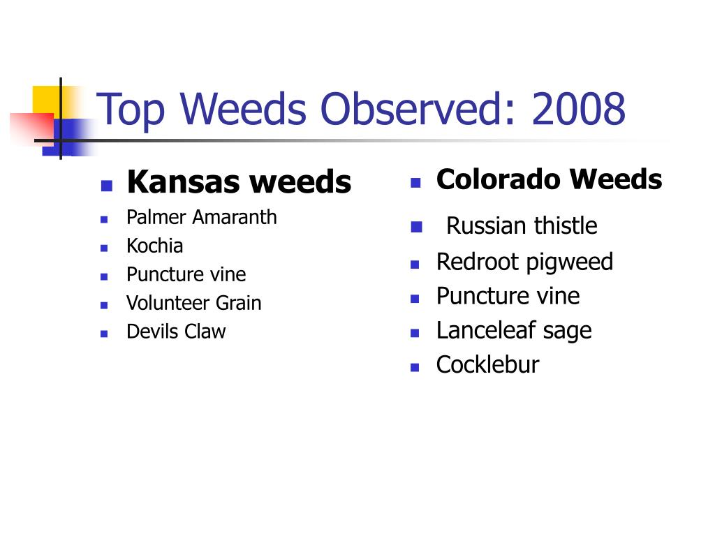 Kansas weeds