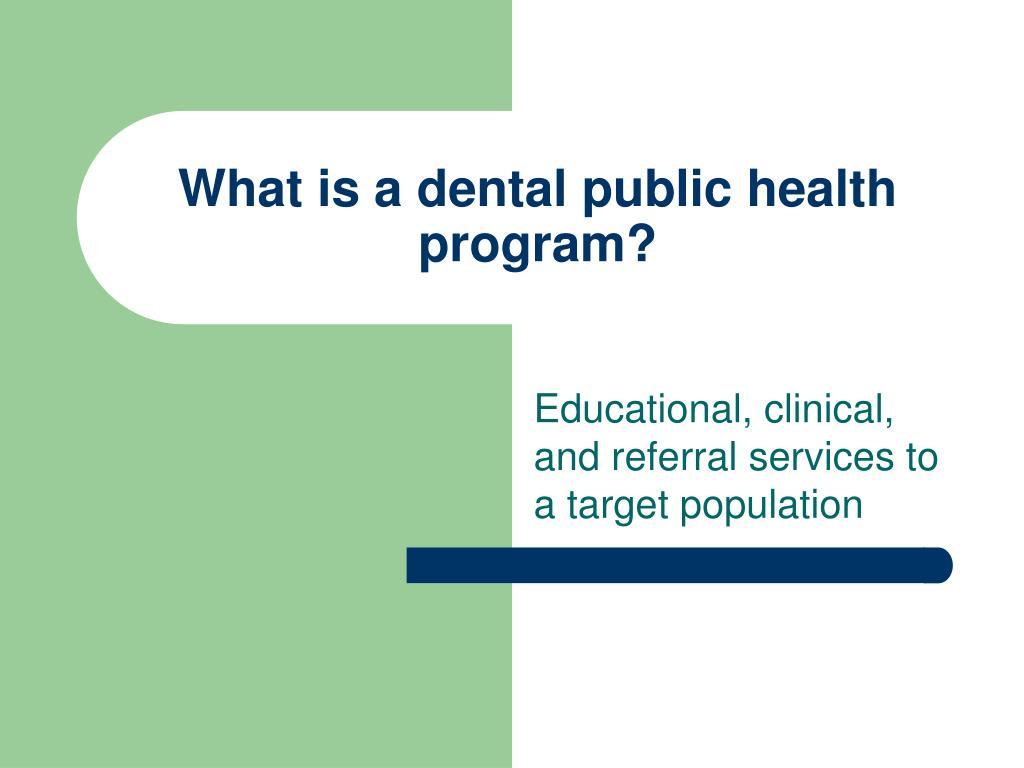What is a dental public health program?