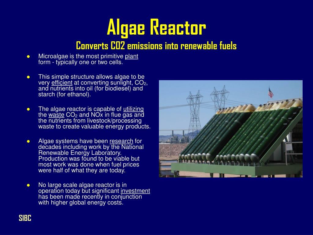 Algae Reactor