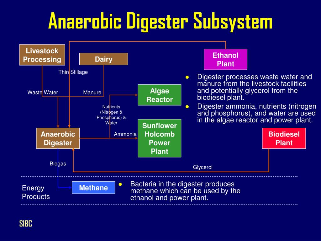 Anaerobic Digester Subsystem