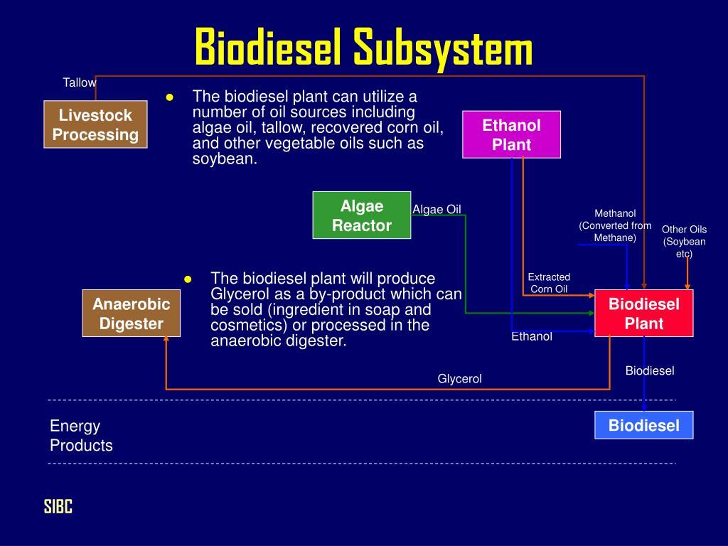 Biodiesel Subsystem