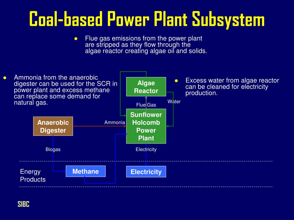 Coal-based Power Plant Subsystem