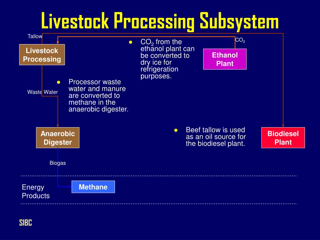 Livestock Processing Subsystem