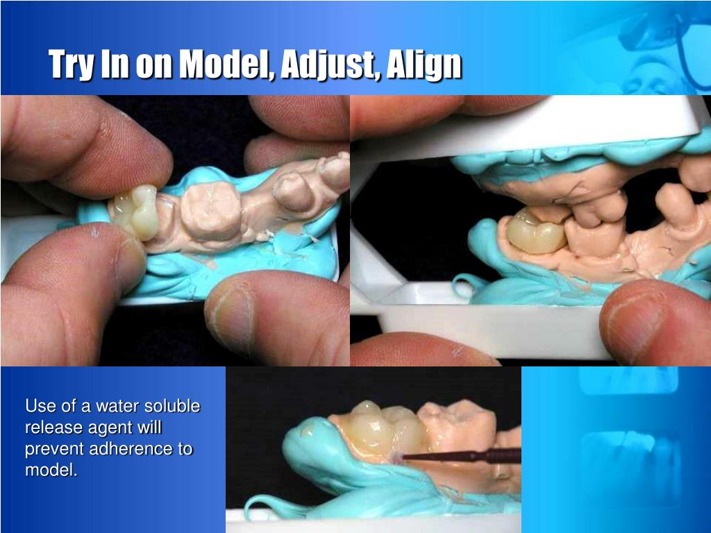 Try In on Model, Adjust, Align
