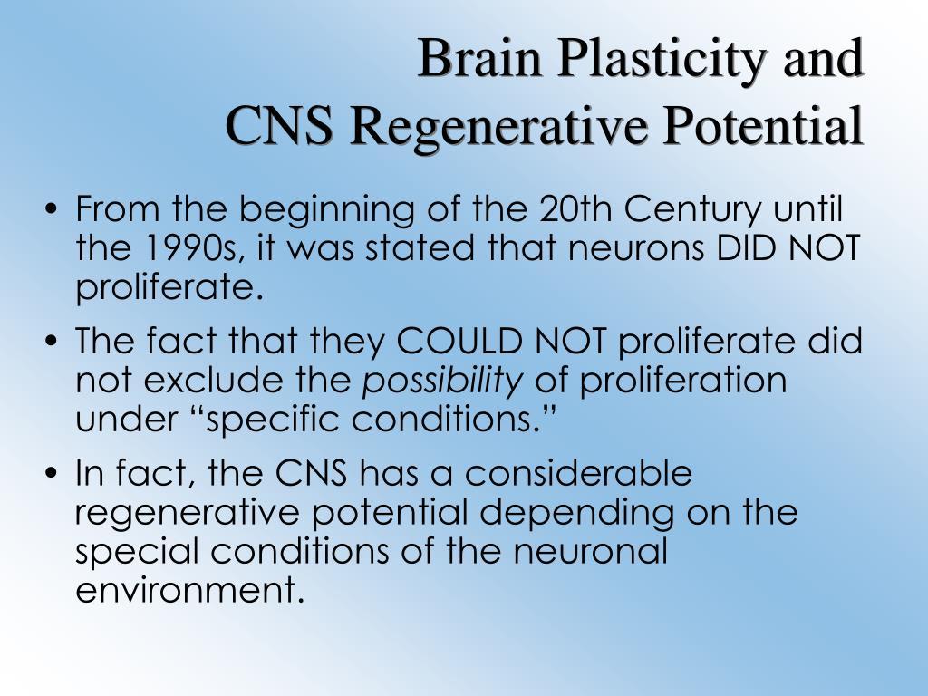 Brain Plasticity and