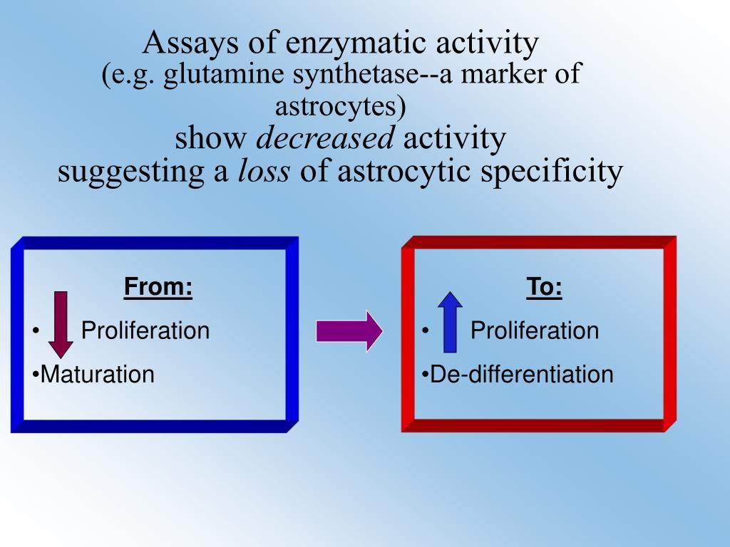 Assays of enzymatic activity