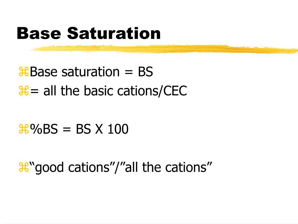 Base Saturation