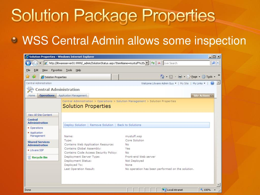 Solution Package Properties