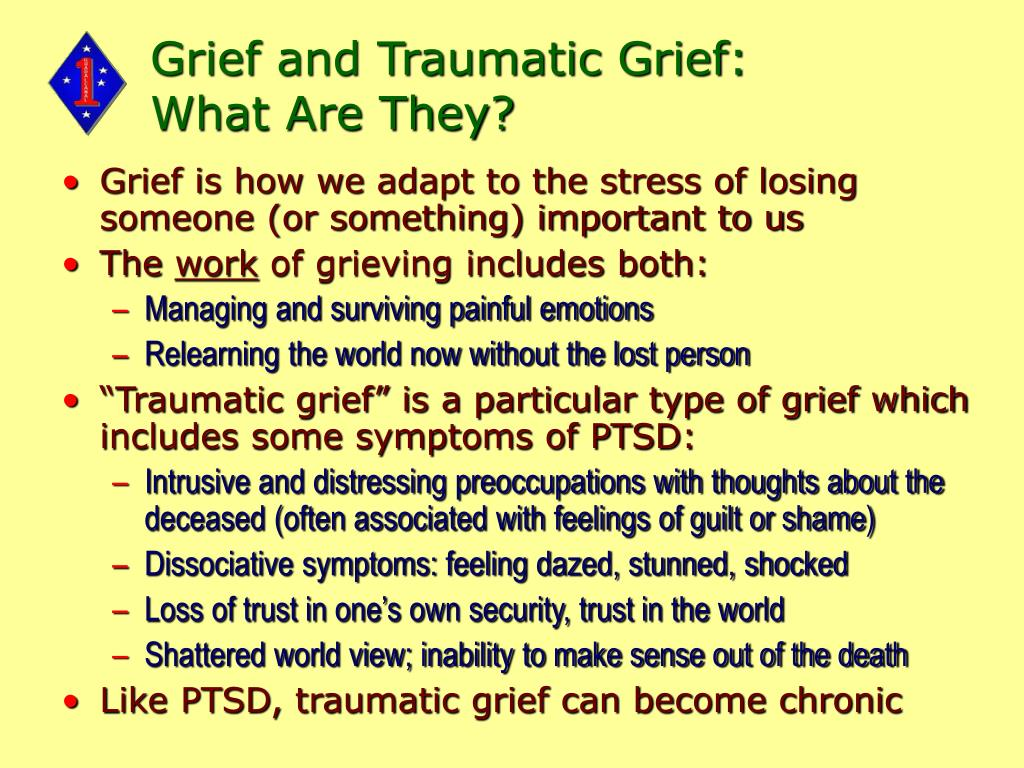 Grief and Traumatic Grief: What Are They?