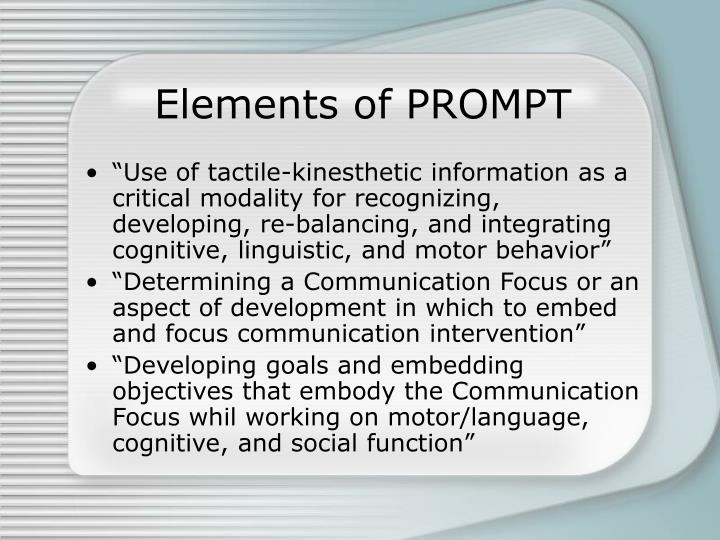 Elements of PROMPT