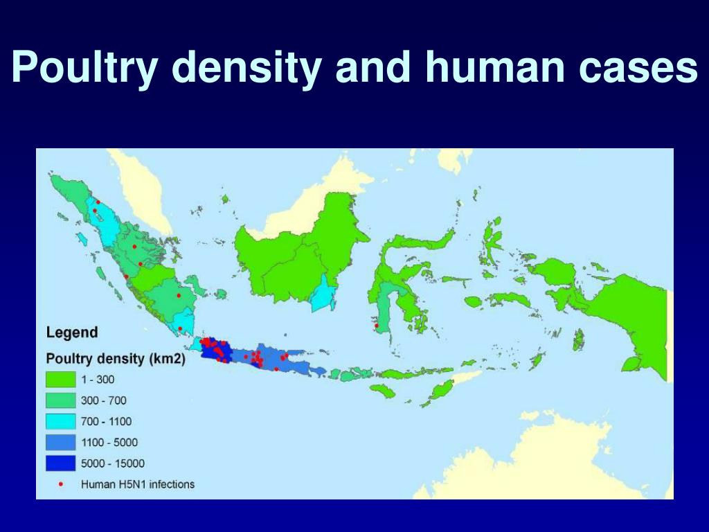Poultry density and human cases