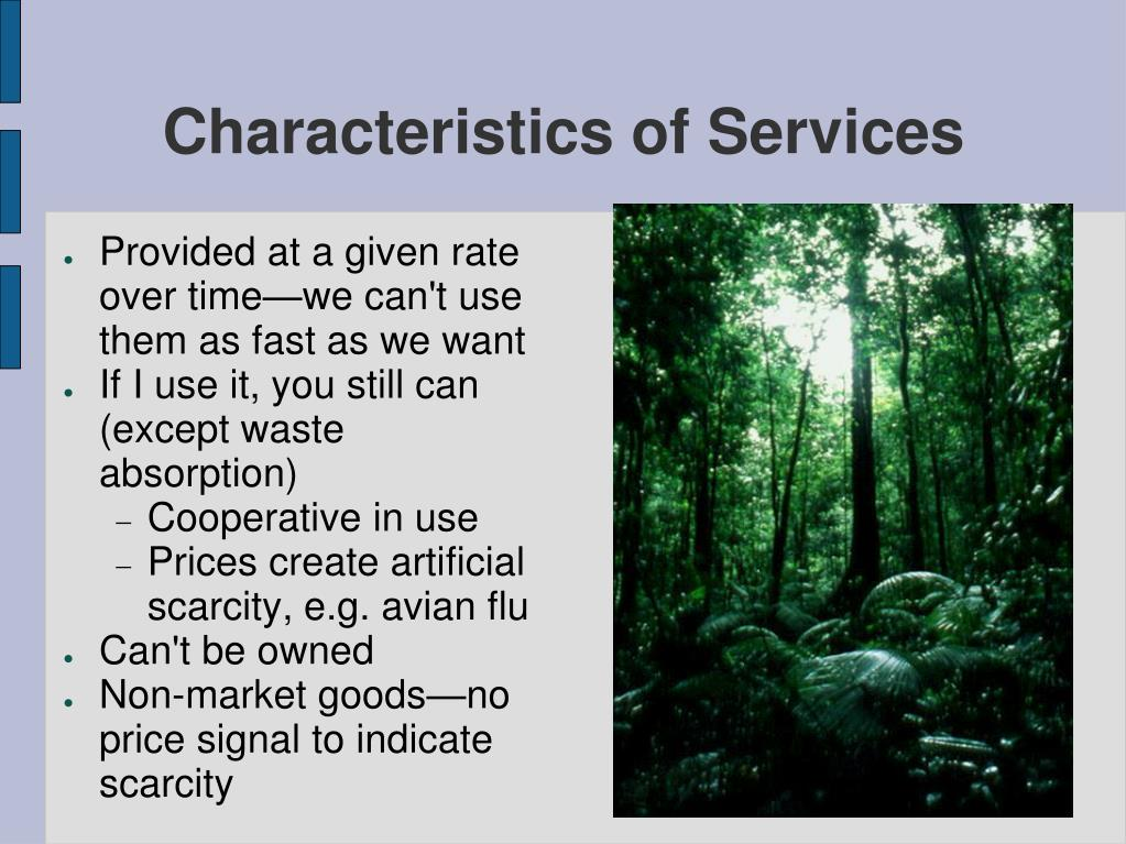 Characteristics of Services