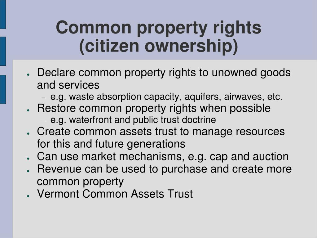 Common property rights (citizen ownership)