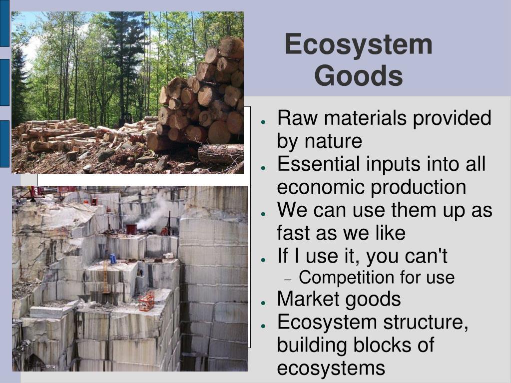 Ecosystem Goods