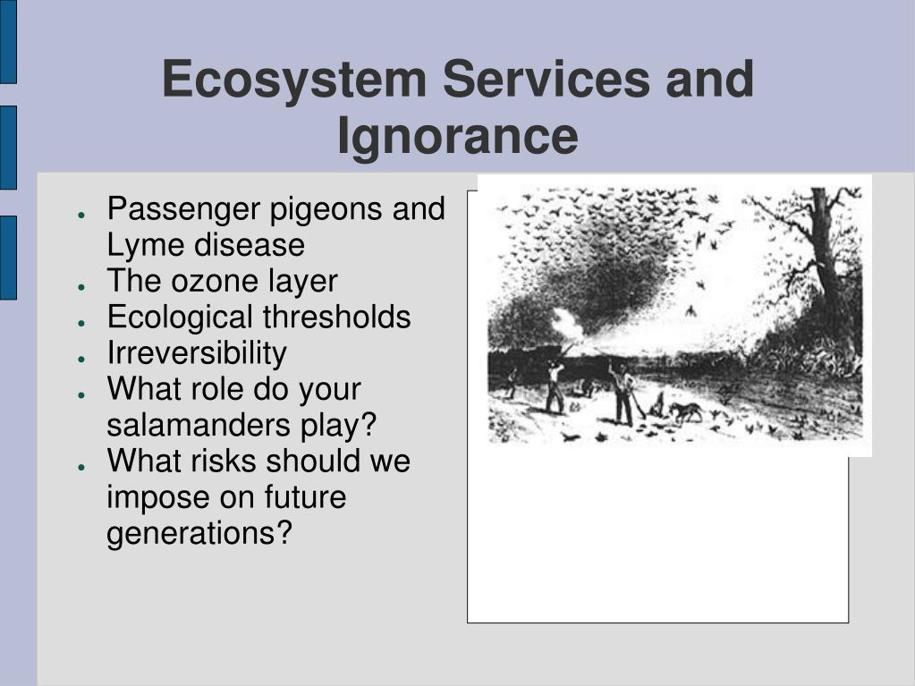 Ecosystem Services and Ignorance