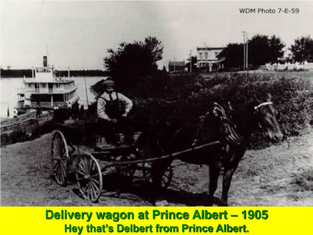 Delivery wagon at Prince Albert – 1905