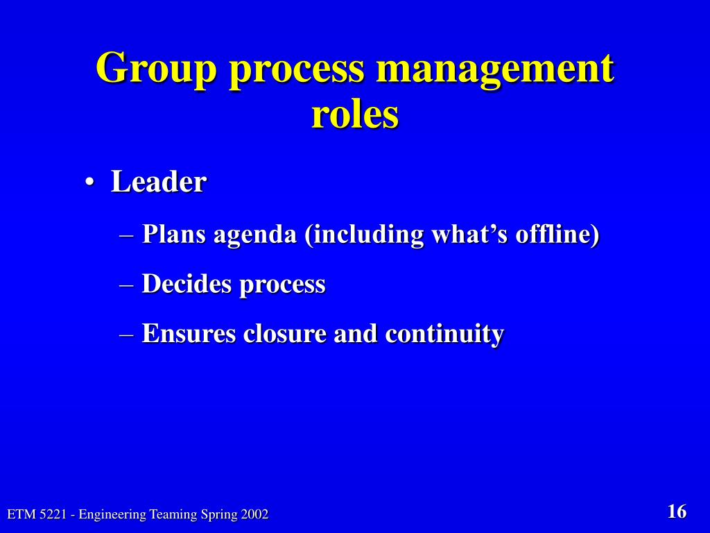 Group process management roles