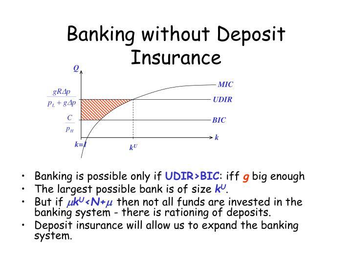 Banking without Deposit Insurance