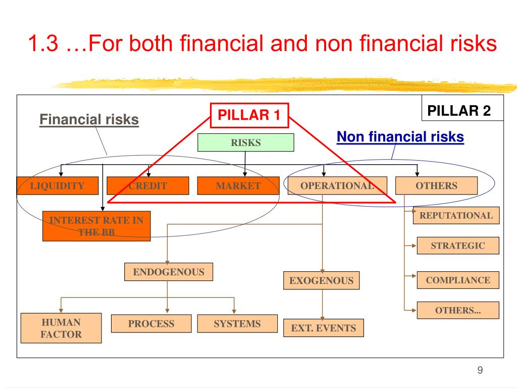 1.3 …For both financial and non financial risks