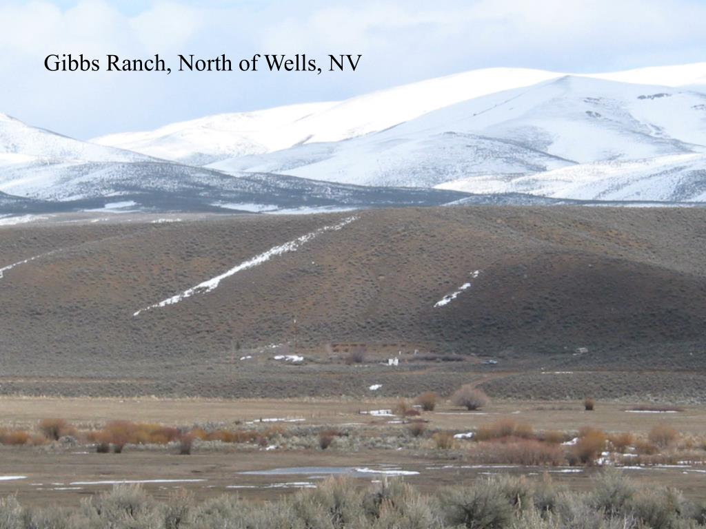 Gibbs Ranch, North of Wells, NV