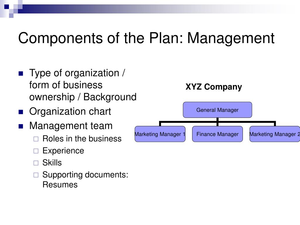 Components of the Plan: Management