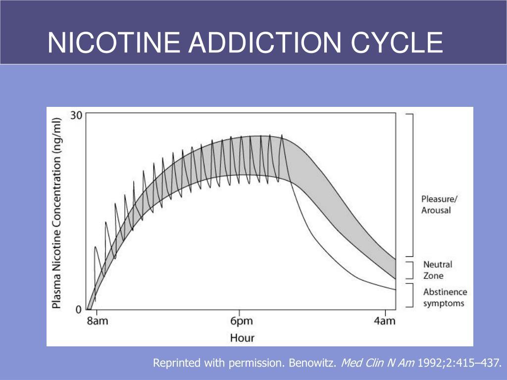 NICOTINE ADDICTION CYCLE