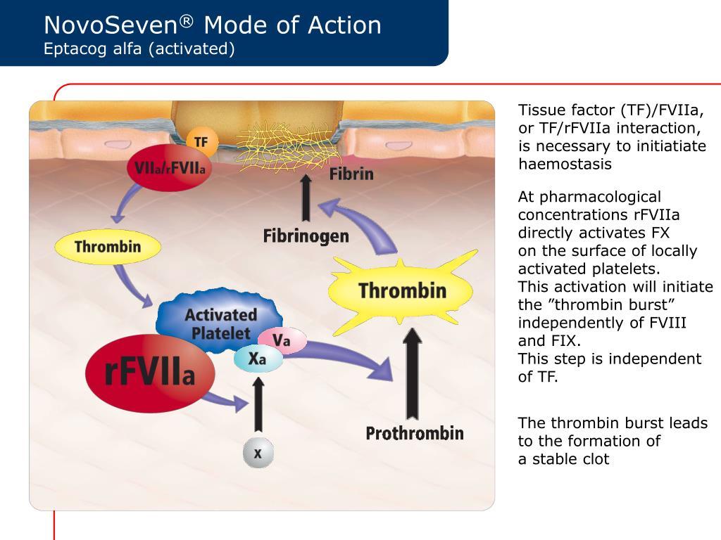 Tissue factor (TF)/FVIIa,