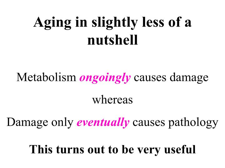 Aging in slightly less of a nutshell